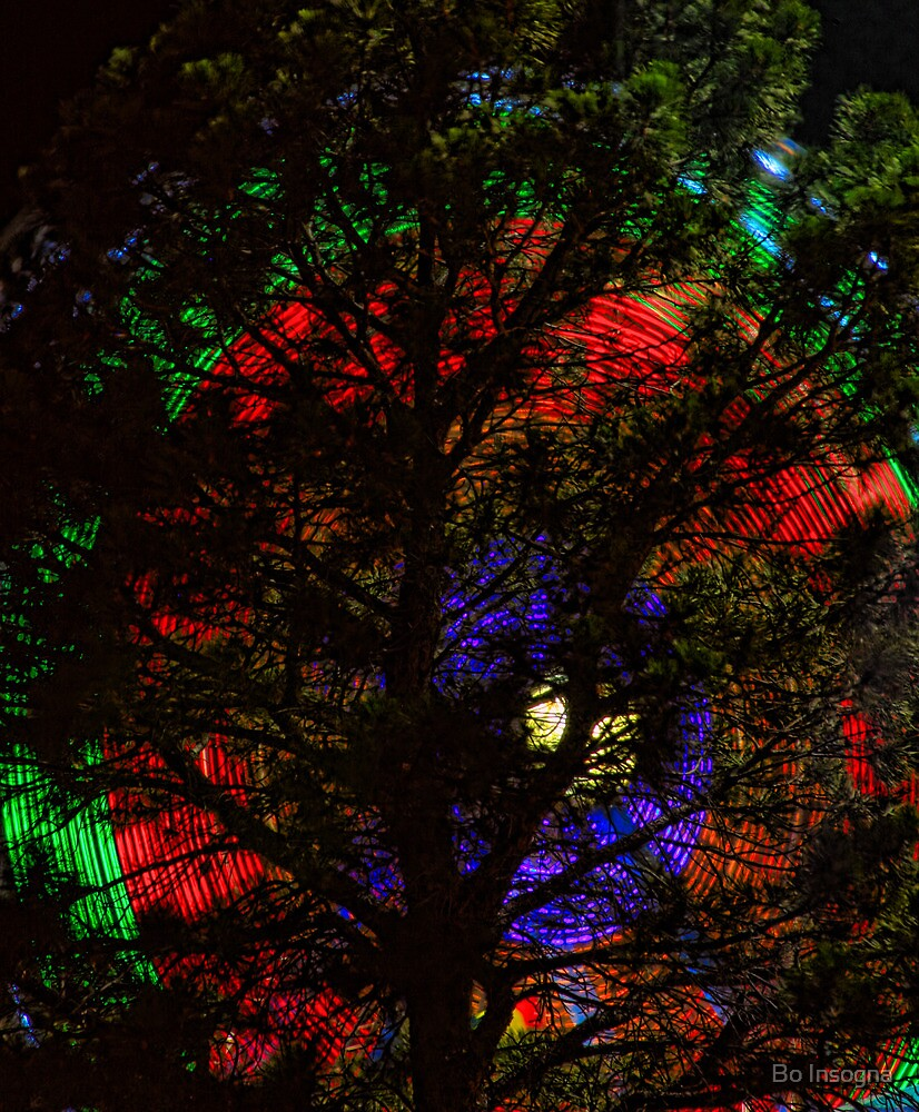Colorful Pine Tree by Bo Insogna