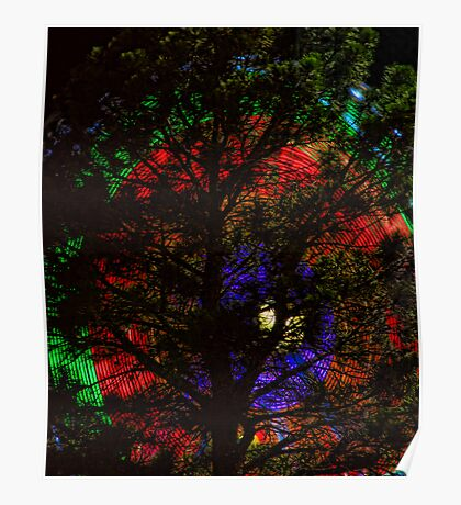 Colorful Pine Tree Poster