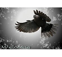 Welcome Cards Photographic Print