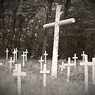 Crosses by meredith brown