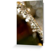 Web & Sparkles 2 Greeting Card