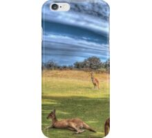 Kangaroos #2 iPhone Case/Skin
