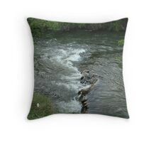 kern river rapids Throw Pillow