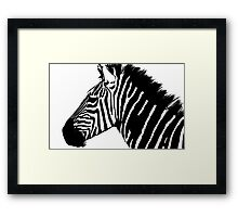 Zebra in black and white Framed Print