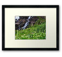 Sneffels Creek Falls Framed Print