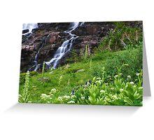 Sneffels Creek Falls Greeting Card