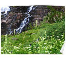 Sneffels Creek Falls Poster