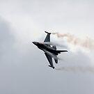 F16 MLU Belgian Air Force by SWEEPER