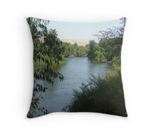 the infamous kern river Throw Pillow