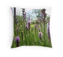 Different sizes, same Beauty! Throw Pillow