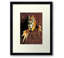 Tiger Wreckage Framed Print