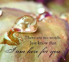 There Are No Words by CarlyMarie