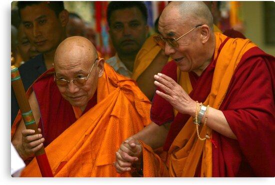 elder statesmen. northern india by tim buckley | bodhiimages