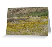 Cabrillo National Park, California Greeting Card