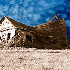 Weathered Barn by scooterdude