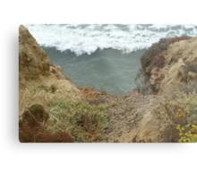 Cabrillo National Park, California Metal Print