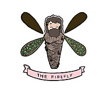 The Firefly Photographic Print