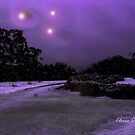 Purple Night by Chris Armytage™