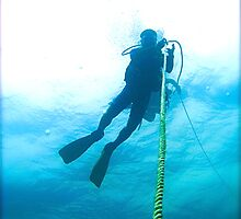 Deco Stop Diver! by NICK COBURN PHILLIPS