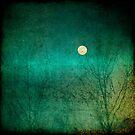 Moon over green... by Julian Escardo