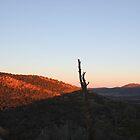 sunrise @ Outback by Partha Saha