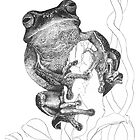 Dainty Green Tree Frog by Laura Grogan