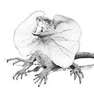 Frill necked lizard by Laura Grogan
