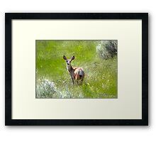 You Again? Framed Print
