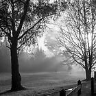 Misty Morning at Nana Glen by Carolyn Boyden