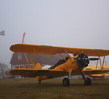 Stearman in the Fog by James Duffin
