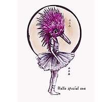 Ballechidna - Hello Special One Photographic Print