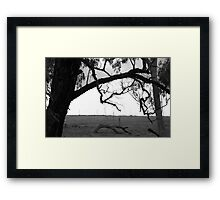 Growing Limbs Framed Print