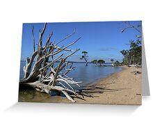 Its not wall art - its Sea Art! Greeting Card