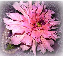 Pink Dahlia & some Pearls Photographic Print