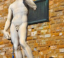 Michelangelo's DAVID by Denis Molodkin