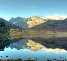 Autumn at Blea Tarn by VoluntaryRanger