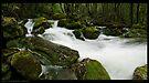 Mother Cummings River Pan by Robert Mullner