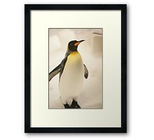 Penguin fun Framed Print