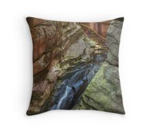 The Water Chute Throw Pillow