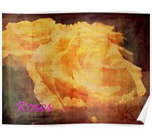 Yellow Roses. Poster