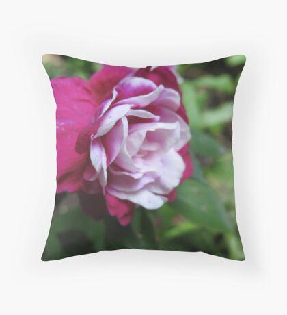 Two-toned Begonia Throw Pillow