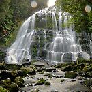 Nelson Falls, west coast Tassie by hillsrain