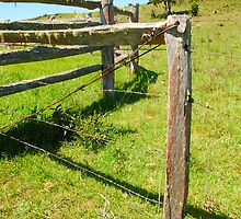 Fence by voir
