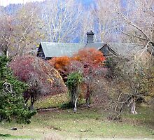 The Old Homestead by coffeebean