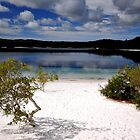 Lake - Fraser Island by Ken Jones