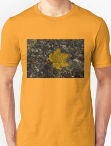 Amber Yellow Sunshine - Maple Leaf and Pebbles T-Shirt
