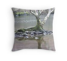 Lagoons in Noth Wales Throw Pillow