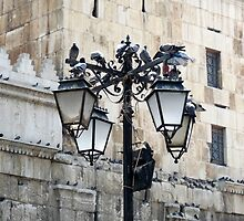 On Their Post In The Heart Of The Old City.  by HELUA