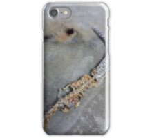 Remains of the Lizard King n°3 iPhone Case/Skin