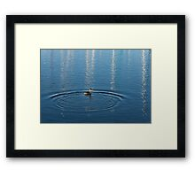 Ripples and Circles – Red-Necked Grebe Framed Print
